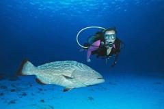 Zuzana with grouper